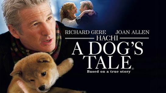 ფილმები, რომელიც უნდა ნახო სანამ ცოცხალი ხარ - ჰატიკო: ყველაზე ერთგული მეგობარი / Hachi: A Dog's Tale