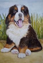 ივანე კრილოვი - ძაღლი