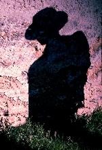 ივანე კრილოვი - ყმაწვილი და ლანდი