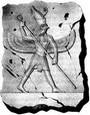 ეგვიპტური ჰოროსკოპი - ჰორი