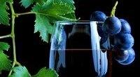 ღვინის ჰოროსკოპი