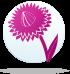 ყვავილების ჰოროსკოპი - უკვდავა  21.01-31.01