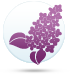 ყვავილების ჰოროსკოპი - იასამანი  14.10-23.10