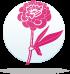 ყვავილების ჰოროსკოპი - იორდასალამი  13.11-22.11
