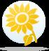 ყვავილების ჰოროსკოპი - მზესუმზირა