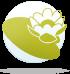 ყვავილების ჰოროსკოპი - დუმფარა  02.07-12.07