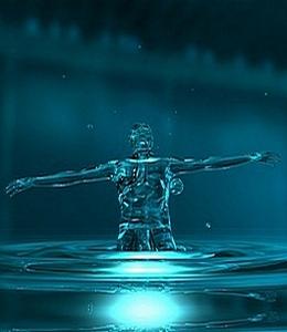 წყლის ფუნქციები ორგანიზმში
