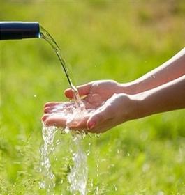 წყალზე ორგანიზმის მოთხოვნილება