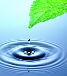 წყალი და მისი მნიშვნელობა