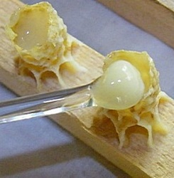 ფუტკრის რძის მოხმარება