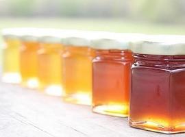 როგორ შევინახოთ თაფლი - ტენიანობა