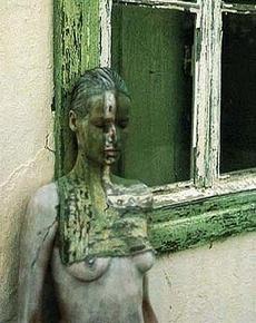 მეტალოპლასტმასის კარ-ფანჯრის ლამინირება