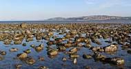 ქვები ზღვაში