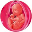 ფეხმძიმობის 30-ე კვირა