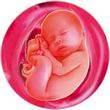 ფეხმძიმობის 39-ე კვირა