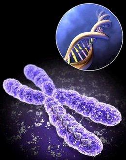 ფეხმძიმობის მე -15 კვირა - გენეტიკური გართულება
