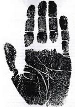 თითქმის ერთი ზომის თითები