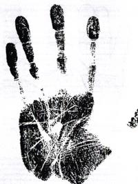 თითების სიგრძე