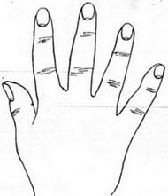 მგრძნობიარე-რბილი ანუ ფუმფულა ხელი