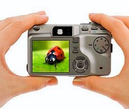 როგორ ავირჩიოთ ფოტოაპარატი - ეკრანი/დისპლეი