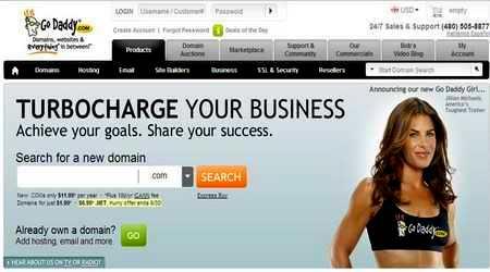 დომენზე და ჰოსტინგზე ინფორმაციის დადგენა - godaddy.com